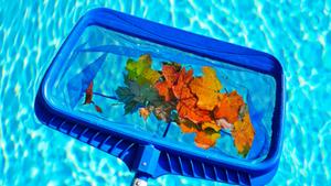 pool cleaners byron bay gurus